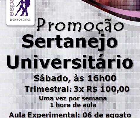 Sertanejo Universitário – sáb. 16h – Iniciante
